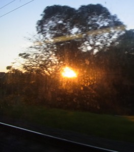 On Monday we went on an early train to Sydney and could see the sun rise shortly after seven.