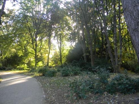 Tiergarten. Berlin, Beginning of Nov. 2012