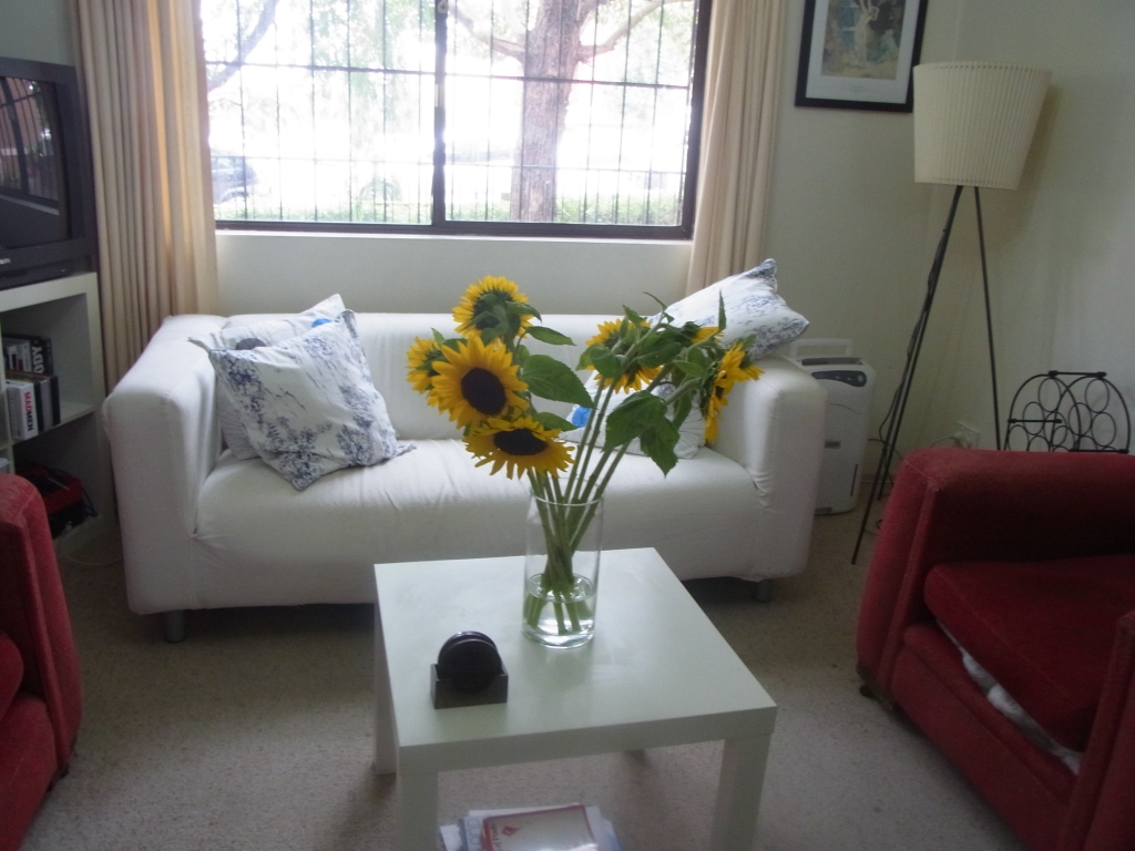 The Sunflowers shining bright in their Livingroom
