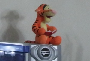 The Tiger-Monkey has found a great spot!