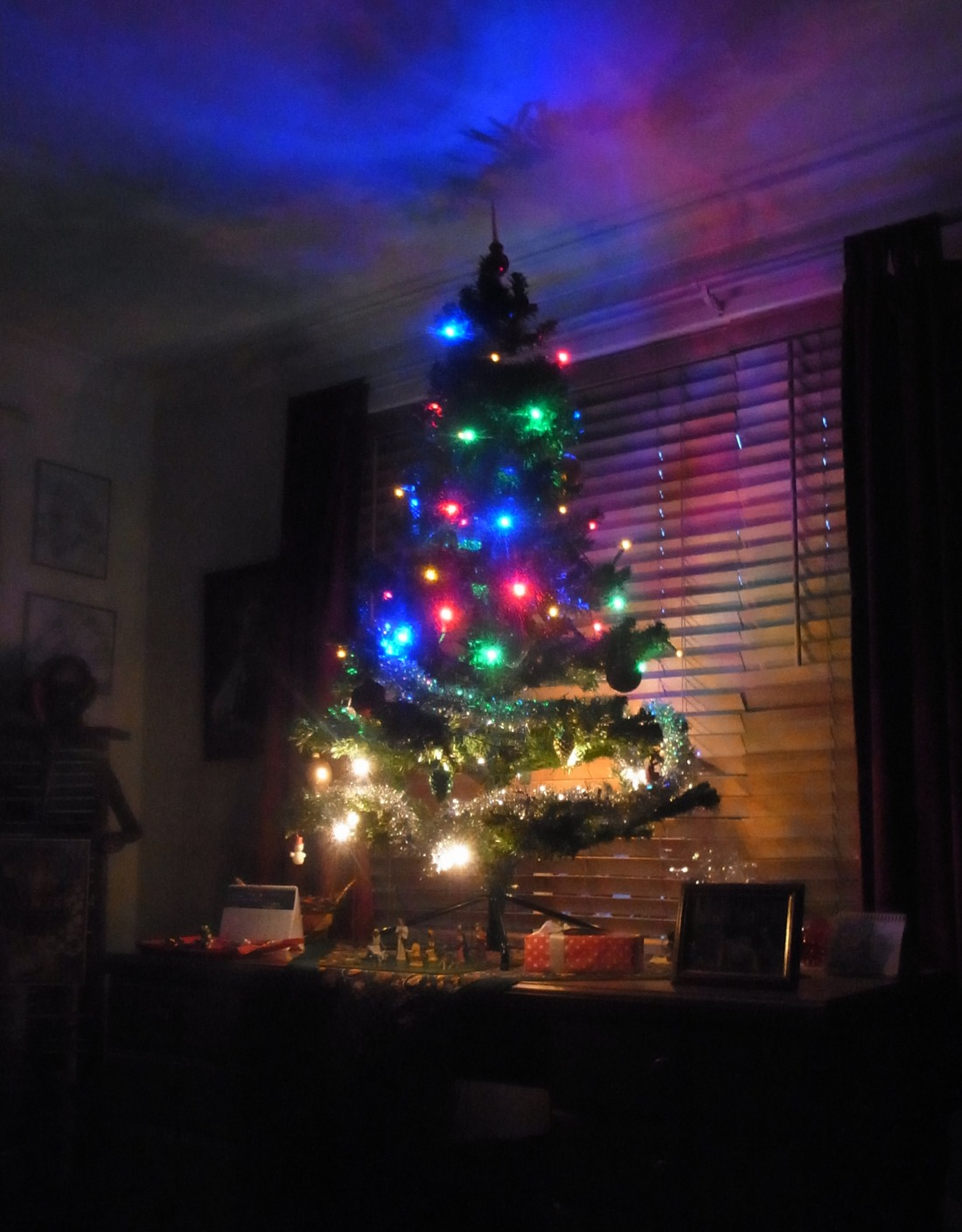 When we came back home, Peter took this picture of our Christmas Tree.