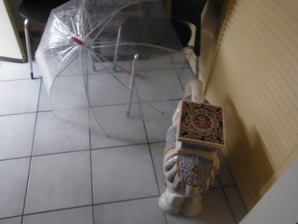 My umbrella did get only a little bit wet. So I decide to take it inside to dry.