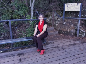 He also took this picture of me. I had a good rest there at this Lookout before we turned back towards the entrance of the Park.