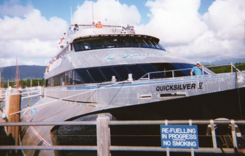 After two nights in Cairns a boat like this one took us up to Port Douglas.