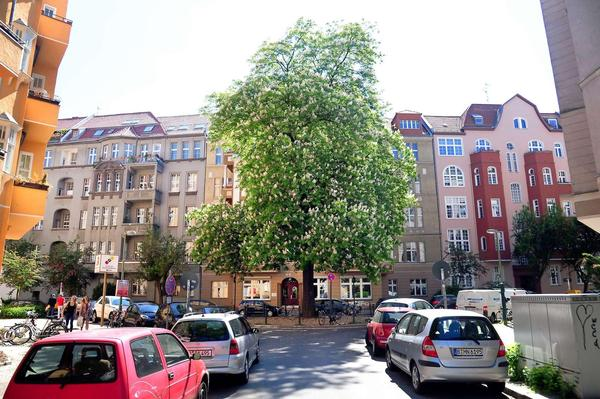This is a view of Bozener Strasse towards the Chestnut Tree. This picture is to be found in
