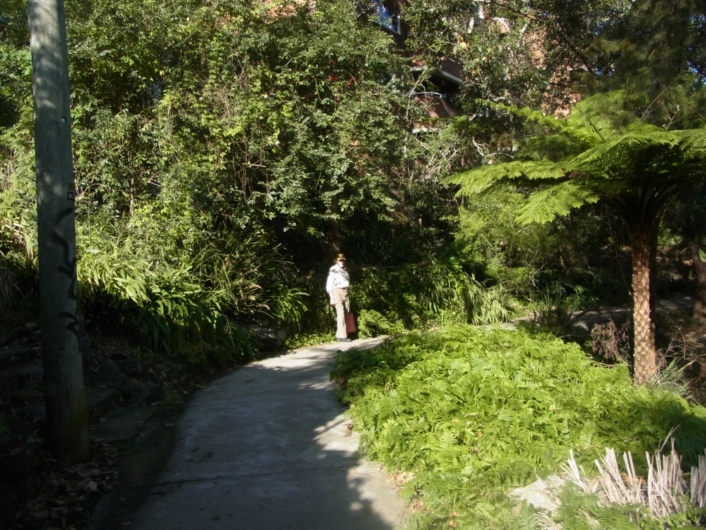 We started our bush walk here.