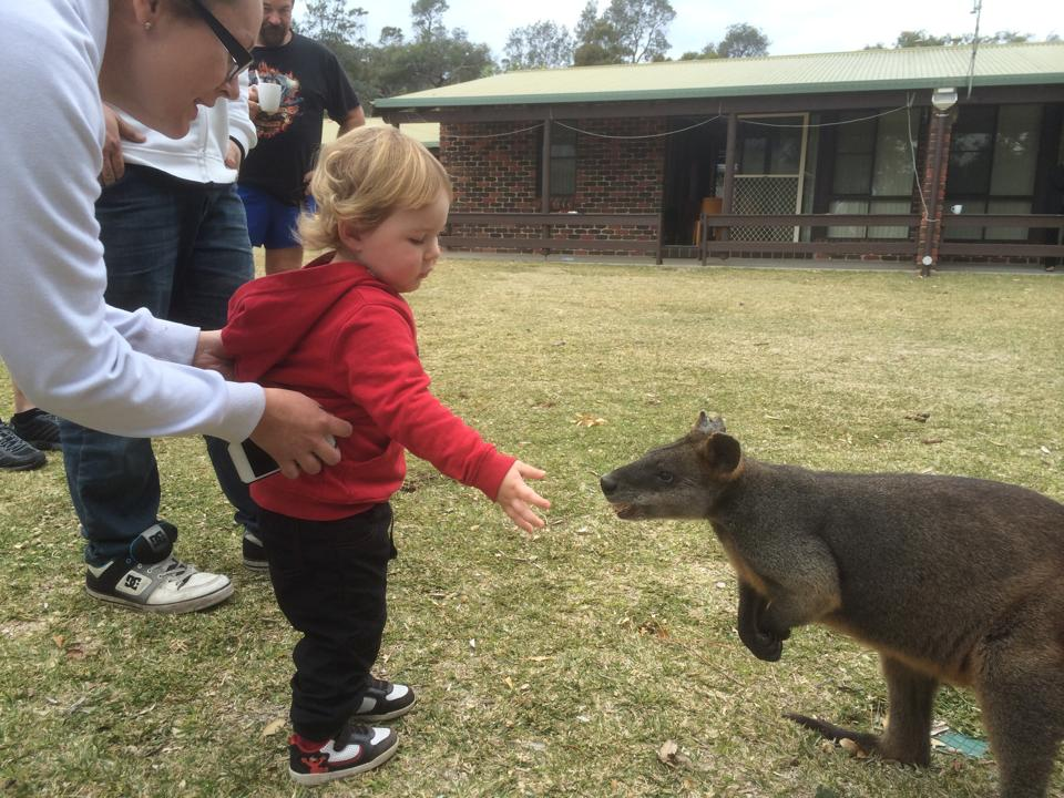 On Saturday Lucas met up with a wombat.