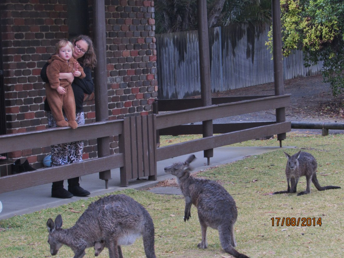 On Sunday he did get to see some kangaroos.