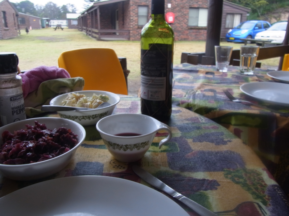 Red cabbage, potato salad and red wine which we did drink our of cups!