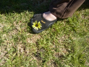 One of these flowers got stuck between my toes.