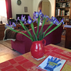 These Irises looked beautiful when they were fresh.