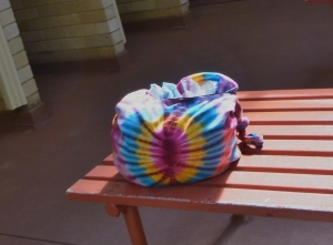 This is the bag I took along with all my stuff.