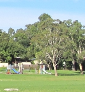 This is the little playground in Lakelands Park.