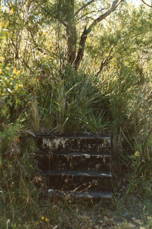 Steps to nowhere! Mt Murray, May 1987