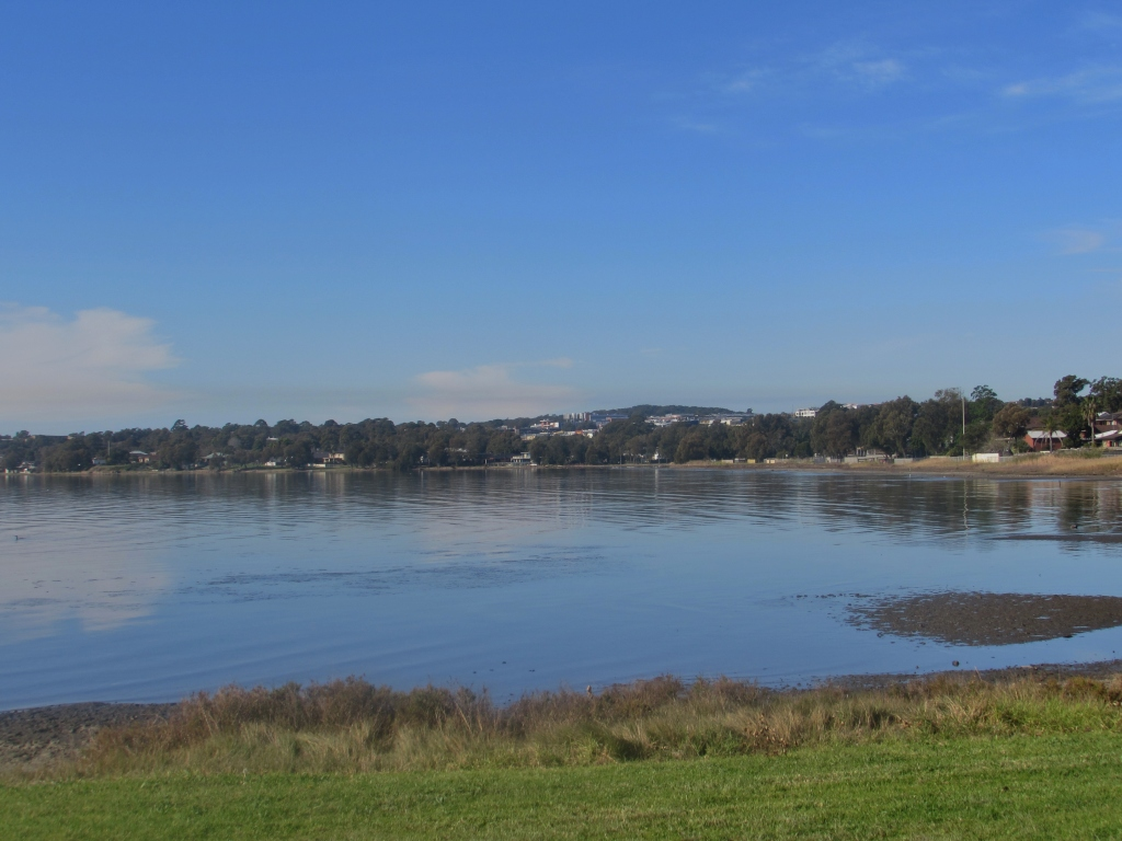 A View of Lake Illawarra from a Park in Oak Flats.