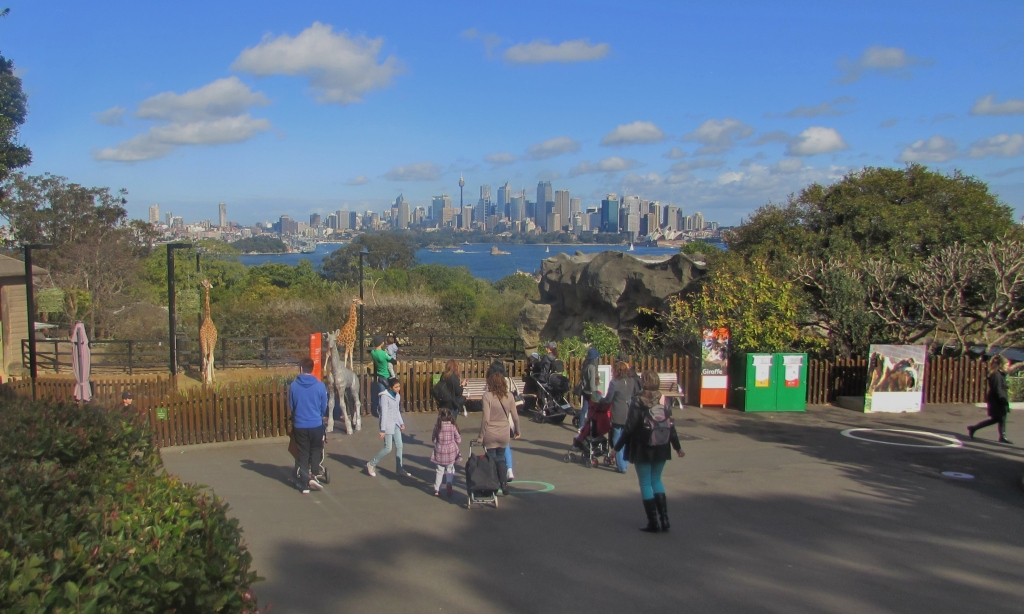 People have a great view from the top of Taronga Park Zoo.
