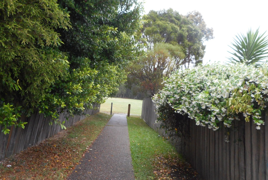 This is a walkway not far from where we live.
