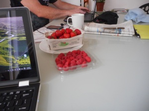 Locally grown fruit that we could buy at ALDI's