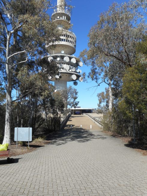 Last Saturday we drove up to the Telstra Tower.
