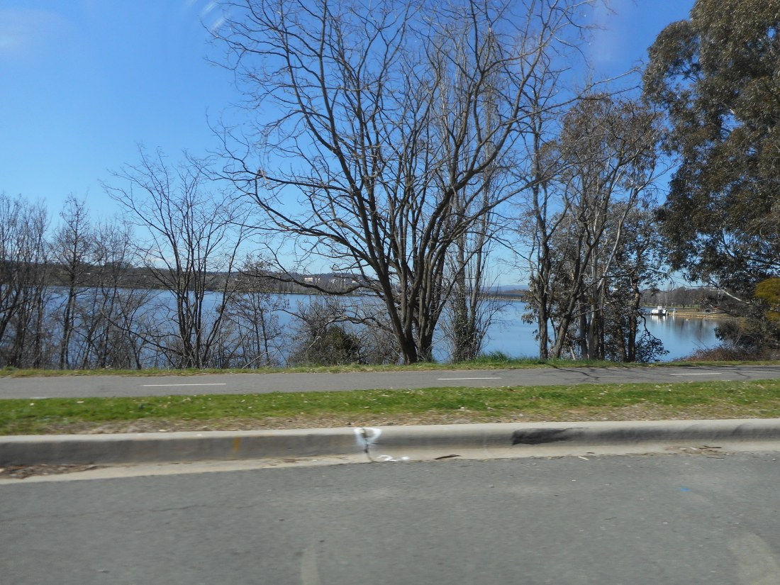 Along Lake Burleigh Griffin